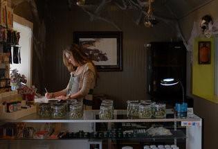 boulder marijuana shop